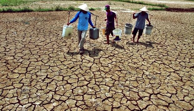 BMKG: 51,2 Persen Wilayah Indonesia Telah Mengalami Musim Kemarau